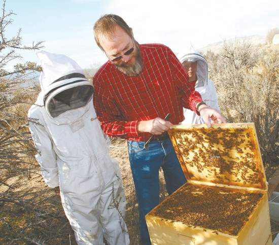 Nevada Backyard Beekeeping is fun and rewarding