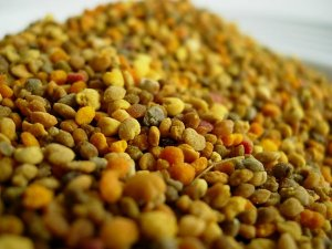 Fresh Bee Pollen - HalleluYah Honey - LSBEES